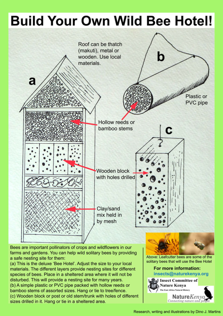 Build-a-bee-Hotel-illustrated-723x1024 New Home Plans Bats on house plans, new log homes, new split entry homes, compressed earth block machine plans, new single level homes, new modular homes, new jersey homes, new tradition homes, new commercial, new modern homes, new eco friendly homes, new services, birthday plans, garage building plans, phone plans, graduation plans, architectural plans, office building plans, simple greenhouse plans, new lighting,